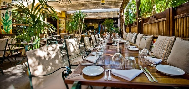 The best dinning experience in Marbella